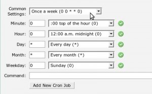 Scheduling the Cron Job and Entering the Cron
